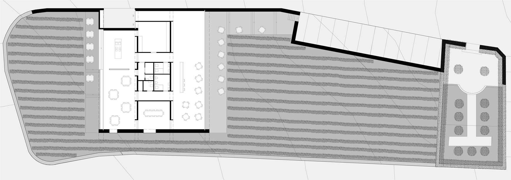 maison des vins Monte-sur-Rolle vue plan de sol_rez chaussée STUDIO CORNEL STAEHELI