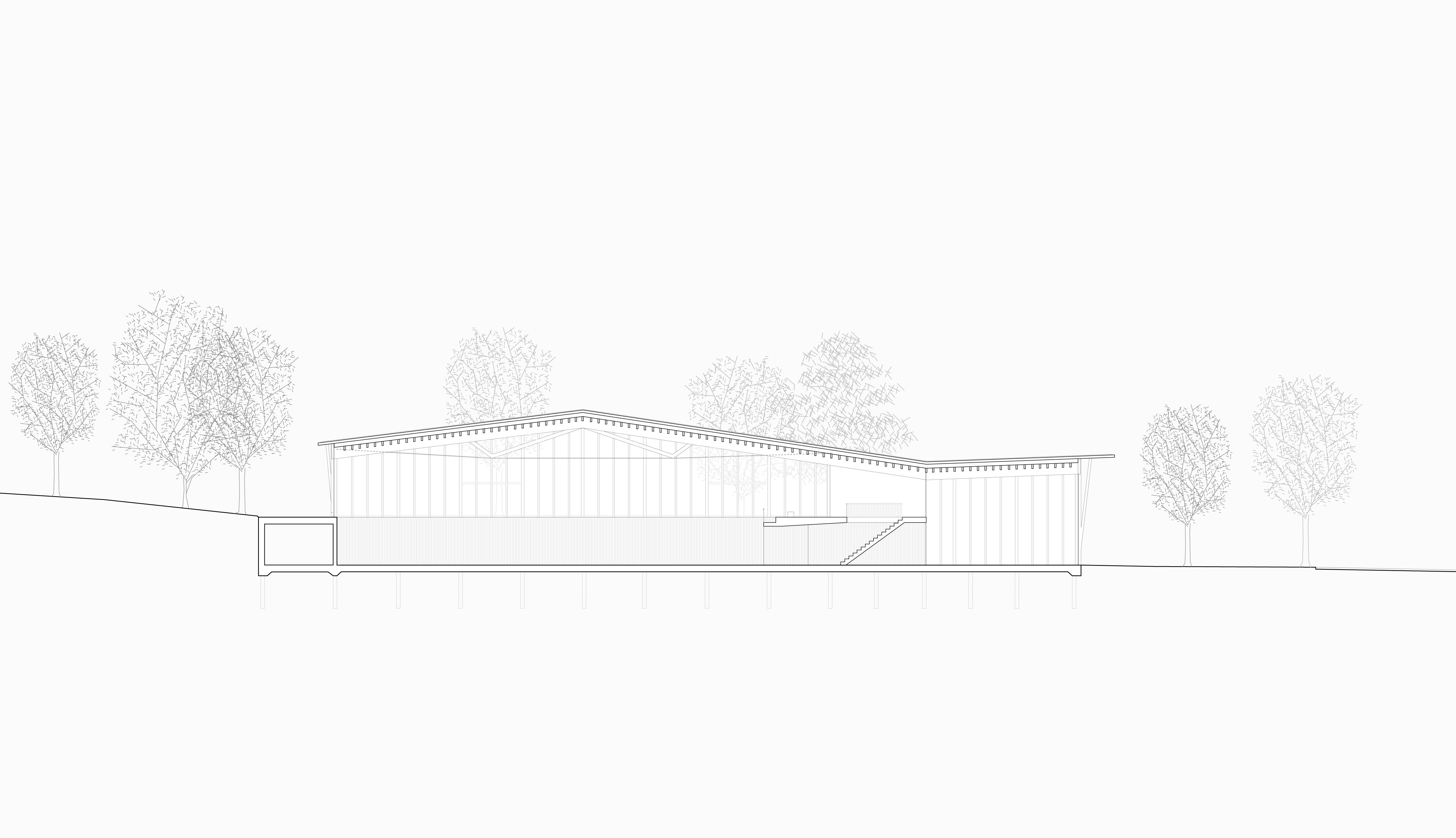 STUDIO CORNEL STAEHELI  Dreifachsporthalle mit Feuerwehrstützpunkt und Zivilschutzanlage Beromünster Situation Schnitt