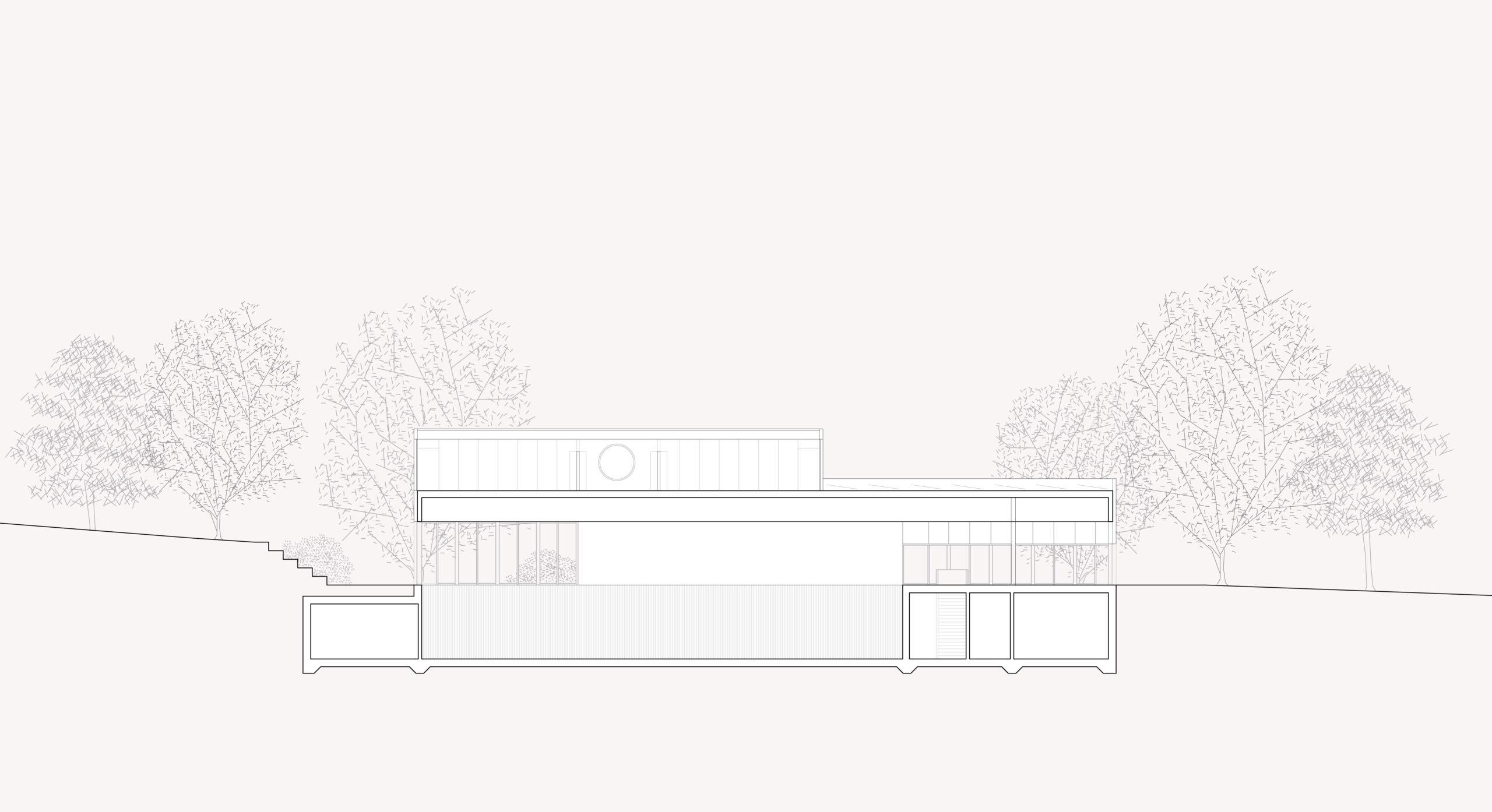 STUDIO CORNEL STAEHELI Schulraumerweiterung und Neubau Doppelturnhalle SH Kastels Schnitt